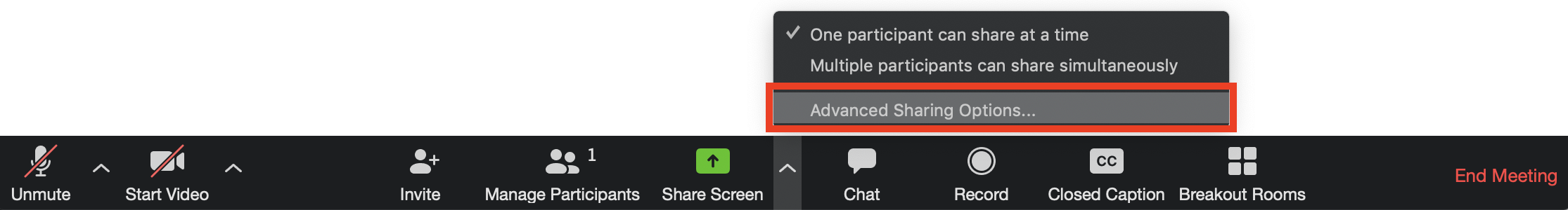 Screensot of Zoom toolbar displaying 'Advanced Sharing Options' selected