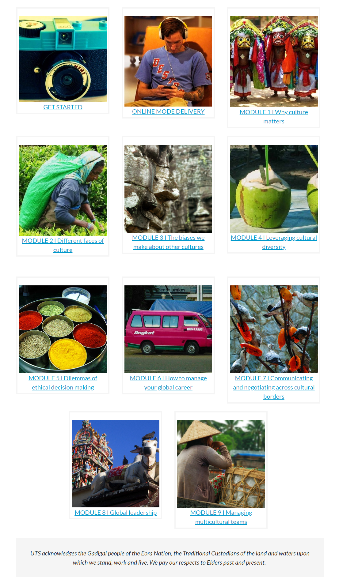A homepage using image tiles that link out to each module. The images help encapsulate the topic each module covers.